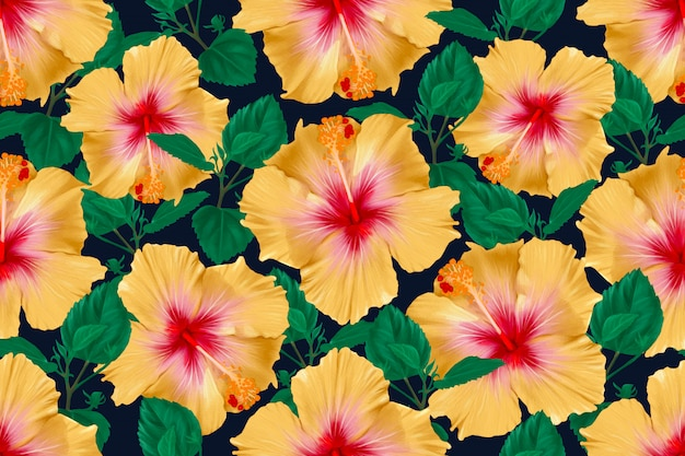 Seamless pattern hibiscus flowers abstract background. illustration watercolor hand drawn.