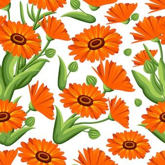 シームレスパターン。白い背景の上の図のキンセンカの花。薬草