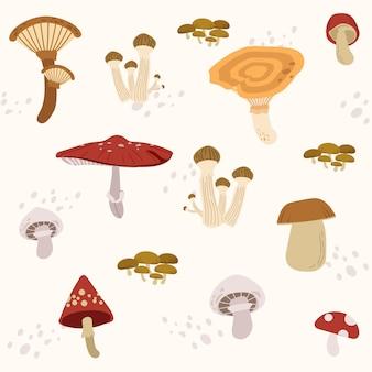 The seamless pattern of many type mushroom set