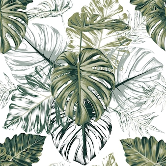 Seamless pattern monstera green leaf abstract white background. illustration dry watercolor hand drawing stlye.