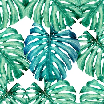 Seamless pattern Monstera green leaves .