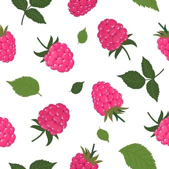 Бесшовный фон из ягод и листьев спелой малины. вектор, белый фон.