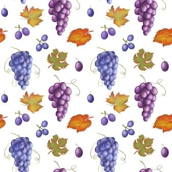 青と紫のブドウと白い背景の上の手描きイラストのシームレスなパターンを残します。
