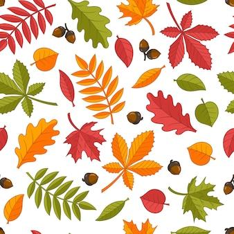 Бесшовный фон из ярких красочных осенних листьев: дуб, клен, каштан, рябина, береза, липа. изолировать на белом фоне