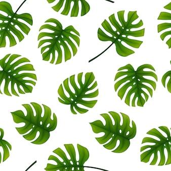 Seamless pattern of monstera leaves