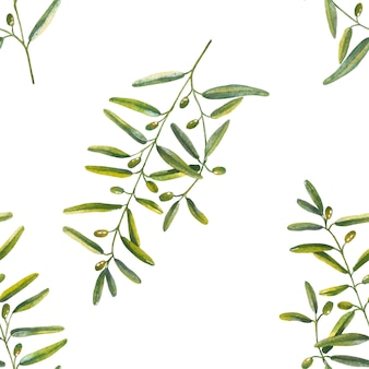 Seamless pattern of olive branches in watercolor