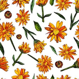 Бесшовный узор на белом фоне из цветущей оранжевой календулы нежный цветочный принт
