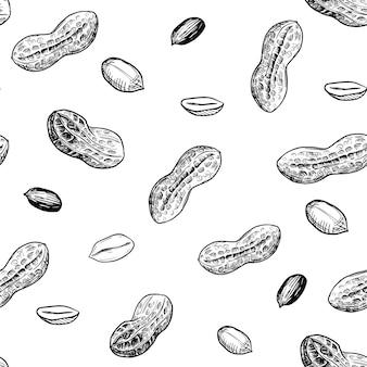 シームレスパターン。ピーナッツのイラスト。手描きスケッチ