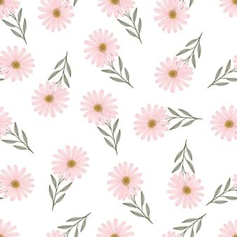 Seamless pattern of pink daisy flower