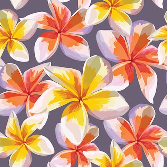 Seamless pattern pink frangipani flowers on abstract background.watercolor drawing .