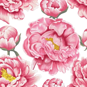 Seamless pattern pink paeonia flowers white background.