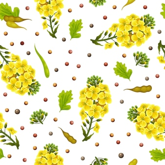 Seamless pattern of rape flowers and leaves, canola.