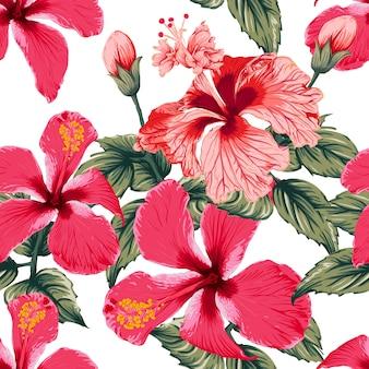 孤立した白い背景の上のシームレスパターン赤いハイビスカスの花。手描きの乾燥した水彩風。
