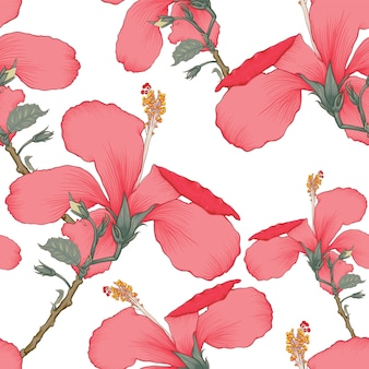 Seamless pattern red hibiscus flowers white background