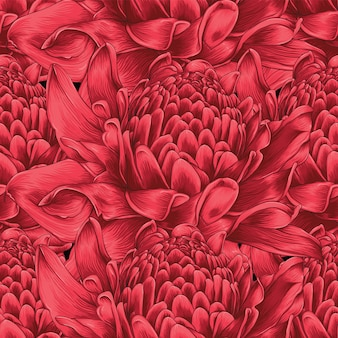 Seamless pattern red torch ginger flowers