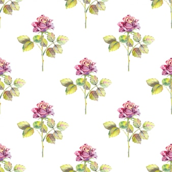 Seamless pattern of rose flowers and green leaves
