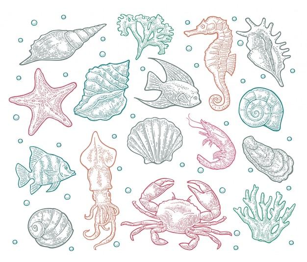 シームレスパターンの海の動物。
