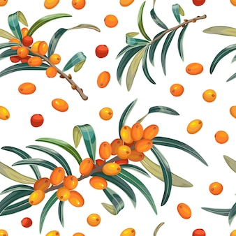 Seamless pattern of sea buckthorn