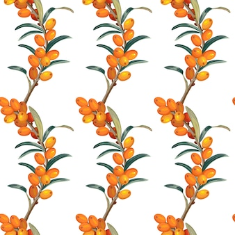 Seamless pattern of sea buckthorn.