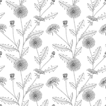 Seamless pattern seamless pattern dandelion floral hand drawn illustration with line art on white backgrounds.