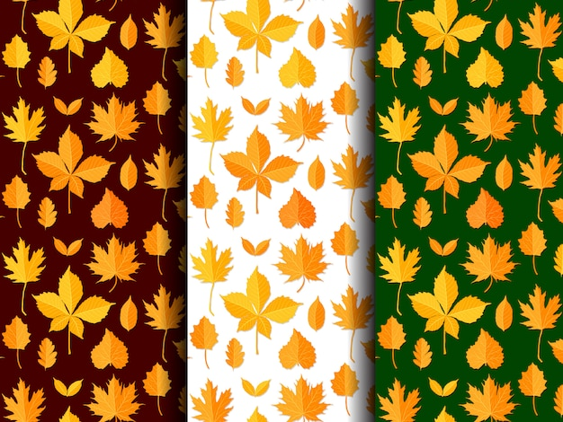 Seamless pattern set of autumn leaves vector