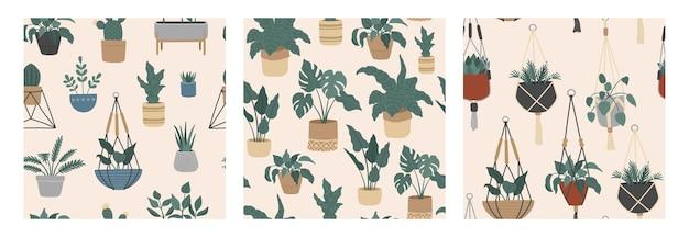 Бесшовный фон набор тропических комнатных растений