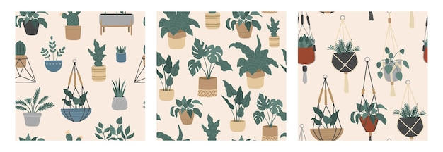 Seamless pattern set of tropical house plants