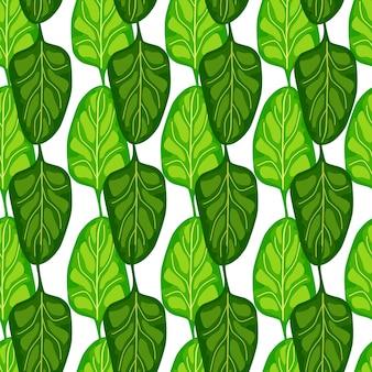 원활한 패턴 흰색 바탕에 시금치 샐러드입니다. 양상추와 함께 현대 장식입니다. 직물에 대한 기하학적 식물 템플릿입니다. 디자인 벡터 일러스트 레이 션.