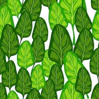 원활한 패턴 흰색 바탕에 시금치 샐러드입니다. 양상추와 함께 현대 장식입니다. 직물에 대한 임의의 식물 템플릿입니다. 디자인 벡터 일러스트 레이 션.