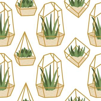 Бесшовные суккуленты в золотых террариумах, модные рисованные домашние растения в плоском стиле, скандинавский интерьер.