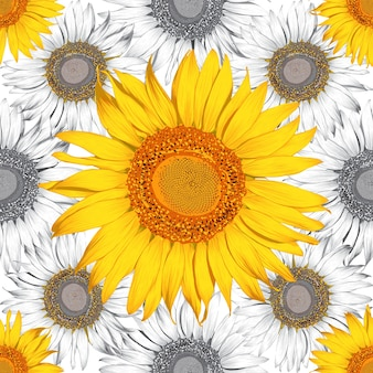 Seamless pattern sunflower flowers abstract background.  drawing.