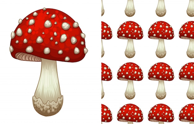 A seamless pattern of a toadstool on white
