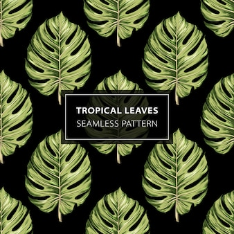 Seamless pattern of tropical leaves monstera.