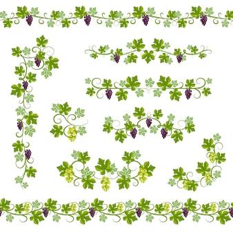 Seamless pattern vine