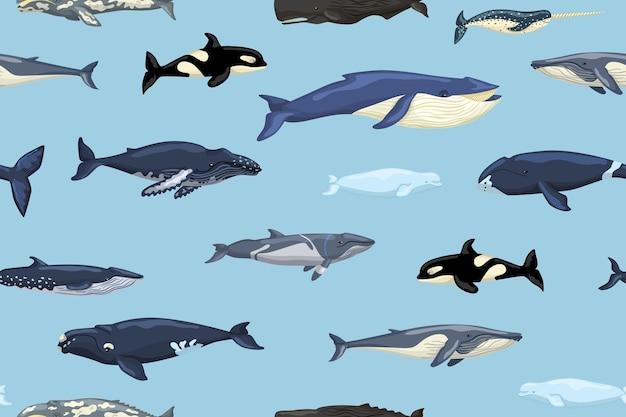 파란색 배경에 원활한 패턴 고래입니다. 어린이를 위한 스칸디나비아 스타일로 바다의 만화 캐릭터를 인쇄합니다. 해양 포유류와 반복되는 질감. 어떤 목적을 위한 디자인. 벡터 일러스트 레이 션.