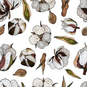Seamless pattern on a white background from blooming cotton delicate abstract floral print vector