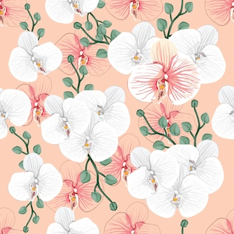 Seamless pattern white orchid flowers