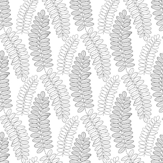 Бесшовные шаблон с листьями акации. линейное искусство векторный фон для упаковки, текстильного и тканевого дизайна