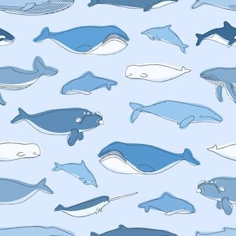 青い背景-クジラ、イッカク、イルカ、カシャロット、シロイルカに描かれた水生動物や海洋哺乳類の手とのシームレスなパターン。テキスタイルプリント、包装紙、壁紙のイラスト。