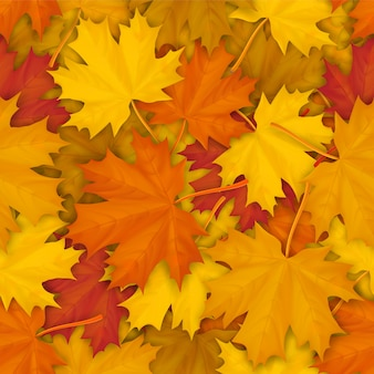 秋の落ちたカエデの葉とのシームレスなパターン。