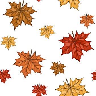 Seamless pattern with autumn maple leaves.   illustration.