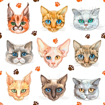 Seamless pattern with cat faces of different breeds of cats