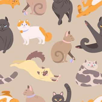 さまざまな品種の猫とのシームレスなパターン