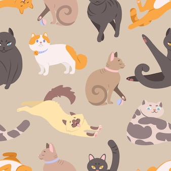 Seamless pattern with cats of various breeds