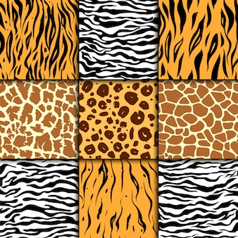 Seamless pattern with cheetah skin, zebra and tiger, leopard and giraffe exotic animal print.