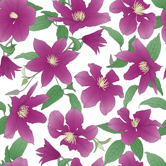 Seamless pattern with clematis flowers.
