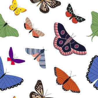 색된 나비 벡터 일러스트 레이 션 흰색 배경과 원활한 패턴