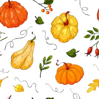 Seamless pattern with colored pumpkins on white background, cute hand drawn pumpkins to holiday halloween, illustration