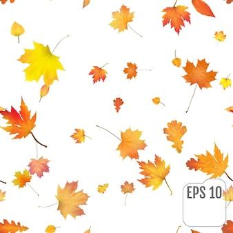 Бесшовный фон с красочными осенними листьями. цветной лист празднование конфетти. праздничный декор. вектор. бесшовный узор на белом фоне.