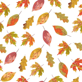 Seamless pattern with colorful autumn leaves on a white background
